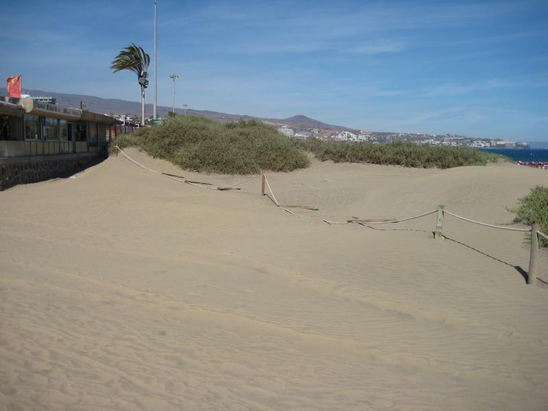 Name:  Urlaub Gran Canaria Herbst 2012 012.jpg Hits: 1818 Größe:  40,4 KB