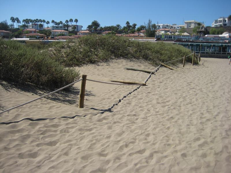 Name:  Urlaub Gran Canaria Herbst 2012 011.jpg Hits: 1890 Größe:  79,4 KB