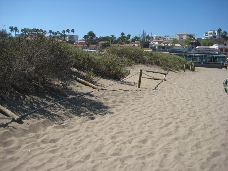 Name:  Urlaub Gran Canaria Herbst 2012 010.jpg Hits: 1824 Größe:  74,4 KB